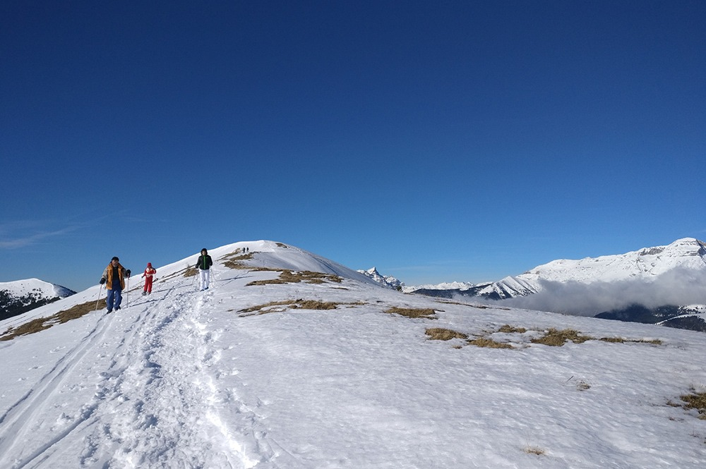 escursion raquetas de nieve guias de torla