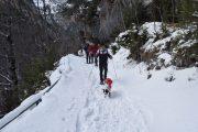 Raquetas de nieve en Ordesa